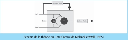 gate-control-theory